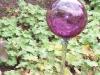 gartenglaskugel-weinrot